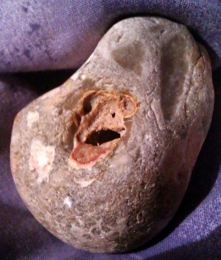stone_frog