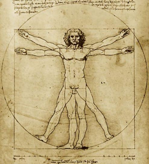 Leonardo-da-Vinci-Vitruvian-Man_cropped